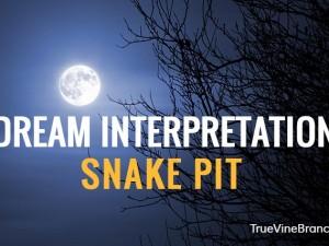 Snake Dream Interpretation – Meaning of Symbols