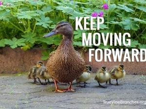Let Them Talk, While You Keep Moving Forward