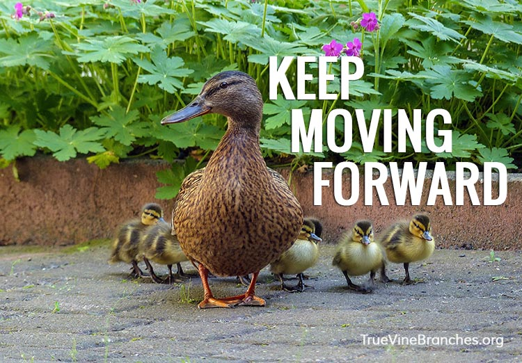 Keep moving forward despite what people say about you