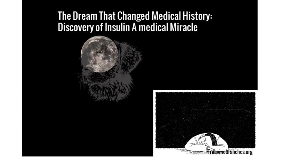 Dream on the discovery of Insulin