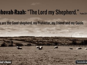 "Jehovah-Raah ""The Lord My Shepherd"""