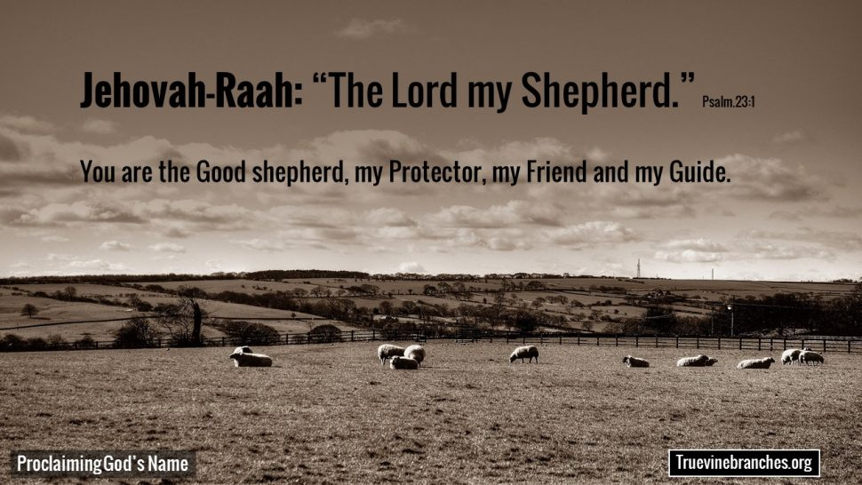 Jehovah Raah the Good sheperd