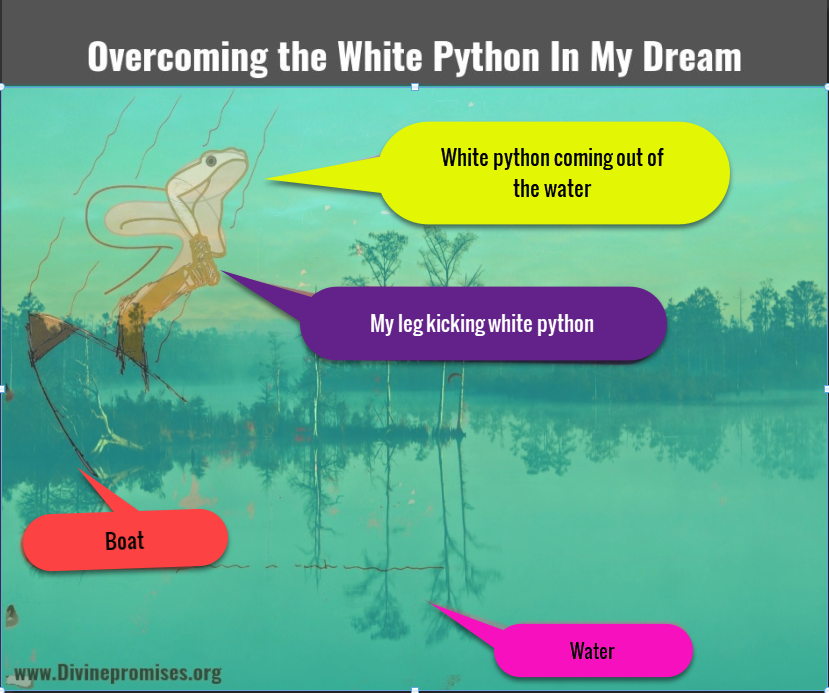 Overcoming the white python in my dream